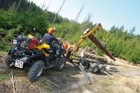 Routiniert: Aufladen von 5-Meter-Stämmen
