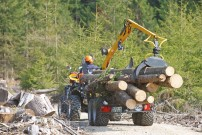 Stabile Konstruktion: Der Holzrückewagen mit Kran von Rudolf Pritsch ist ausgelegt für 4 Tonnen Nutzlast – aus dem Wald zieht Rudi immerhin 2 Tonnen