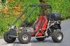 Explorer Adly Buggy mit 125 Kubik, 4-Takt Einzylinder-Motor, einem Sitz und Straßenzulassung (Führerschein Klasse 3)