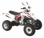Stark verbessert: Hisun 350 ATV-2