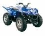 Sportliches ATV: Hisun 500 ATV 2