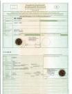 Quadix: LoF-Zulassung für Buggy 800 4x4