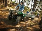 Yamaha Grizzly 450 IRS: übernimmt leichte Transport-Aufgaben