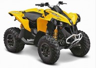 Can-Am Model-Range 2013: Renegade 500 / 800R