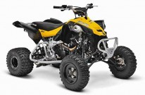 Can-Am Model-Range 2013: DS 450