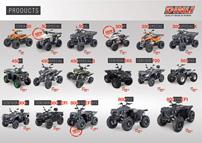 Dinli ATVs und Quads 2013: neuer Prospekt: Fahrzeug-Übersicht im neuen Prospekt