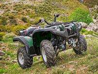 Yamaha Grizzly 700 EPS WTHC, Modell 2014: Referenz unter den hubraumstarken Automatik-ATVs